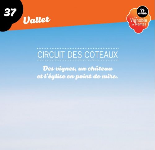 Tarjeta de circuito les coteaux en Vallet