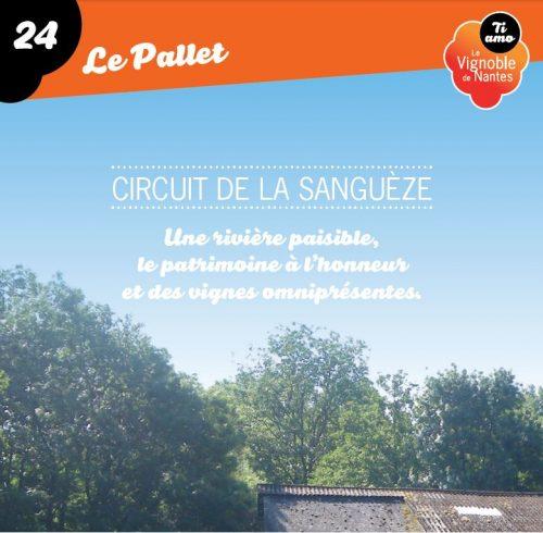 Tarjeta de circuito la Sanguèze