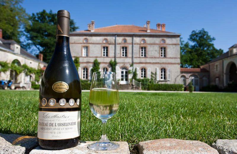 2014-chateaudeloiseliniere-gorges-44-DEG-valeryjoncheray-8563