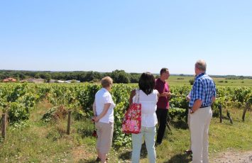 NANTES WINE TOUR – NWT