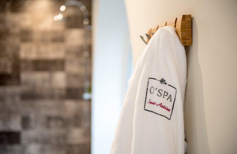 2016-hotel-bestwestern-spa-clisson©Dominique Drouet-44-levignobledenantes (5) [1280×768]