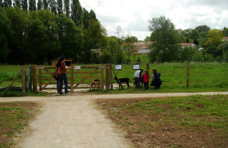 2018-coulee-logne-vallet-vignoblenantes-tourisme (6)