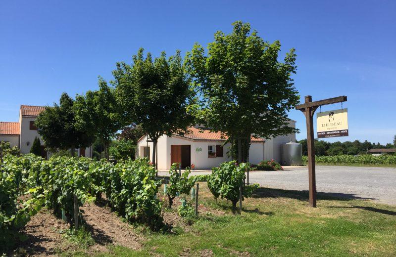 2019-FamilleLieubeau-caveau-chateauthebaud-44-levignobledenantes
