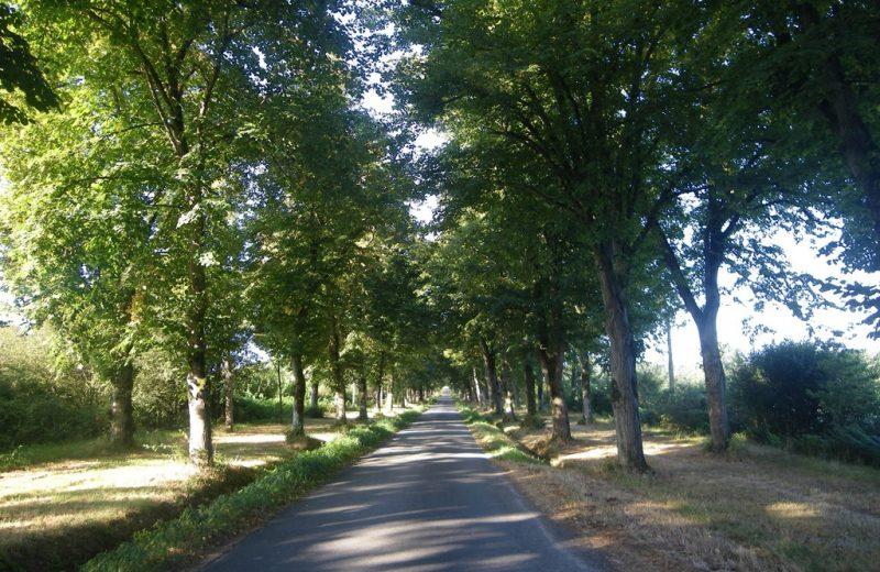 circuit-chateau-hte-goulaine-levignoblenantes-tourisme (6)