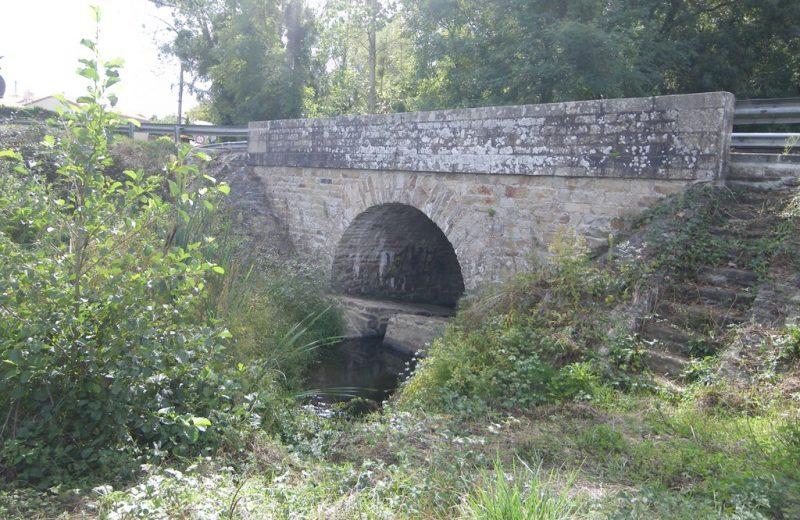 circuit-coteaux-vallet-levignoblenantes-tourisme (9)