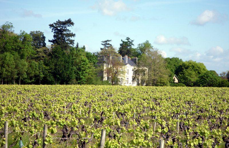 circuit-marais-haute-goulaine-levignobledenantes-tourisme(4)