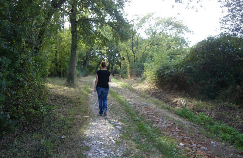 circuit-marais-lelandreau-levignoblenantes-tourisme (11)