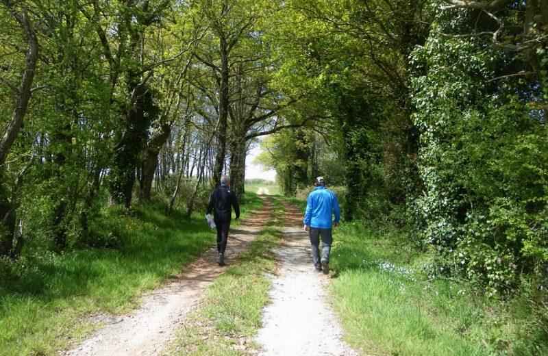 circuit-terres-vignes-st-lumine-clisson-levignoblenantes-touris (14)