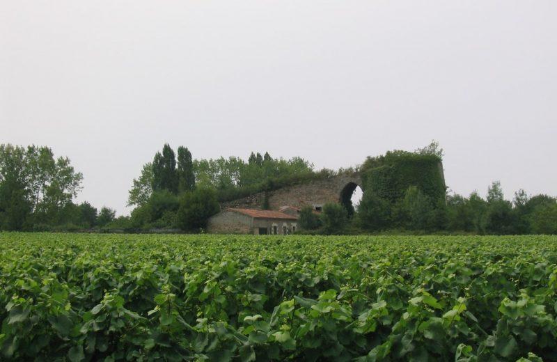 four-a-chaux-le-montru-patrimoine-culturel-levignobledenantes- la-chapelle-heulin-44 (2)