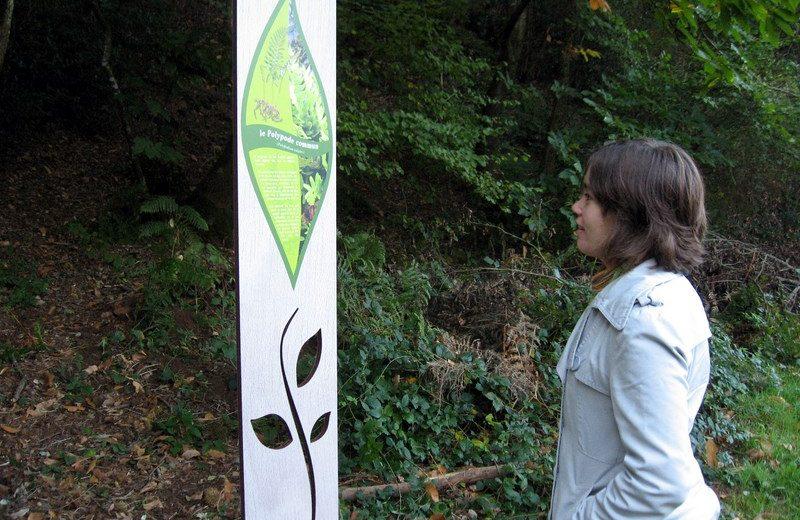 murmures-rochers-petit-botaniste-levignobledenantes-tourisme (16)