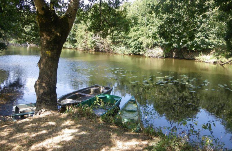 reuzard-vallee-maine-aigrefeuille-sur-maine-44- (1)
