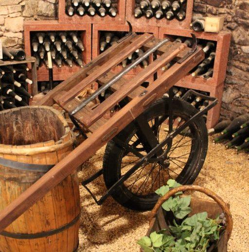 viticulteur-forgesu-mouzillon-44-DEG